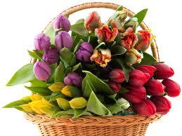 Купить Букеты из тюльпанов