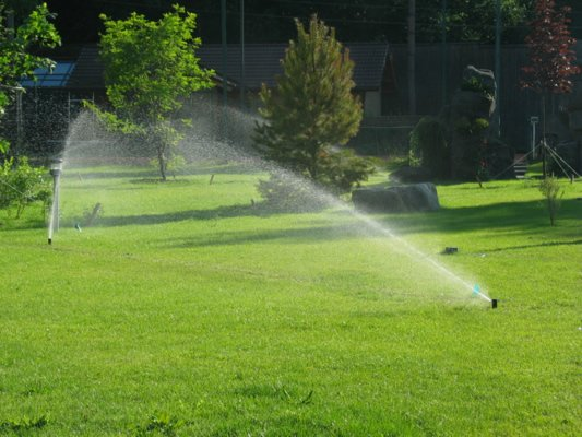 Buy Systems of automatic watering