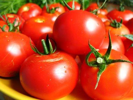 Buy IKAR - (Tomatoes in Baku)