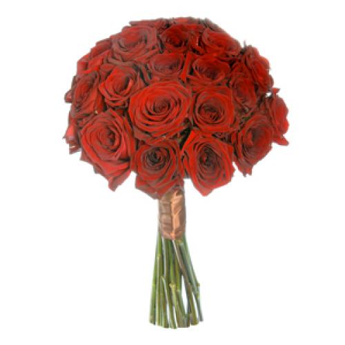 Купить Букеты из роз All Red