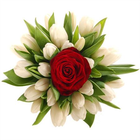 """Buy Bouquet """"Superiority"""
