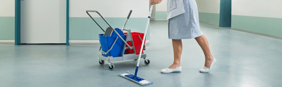 Buy Professional chemistry for cleaning