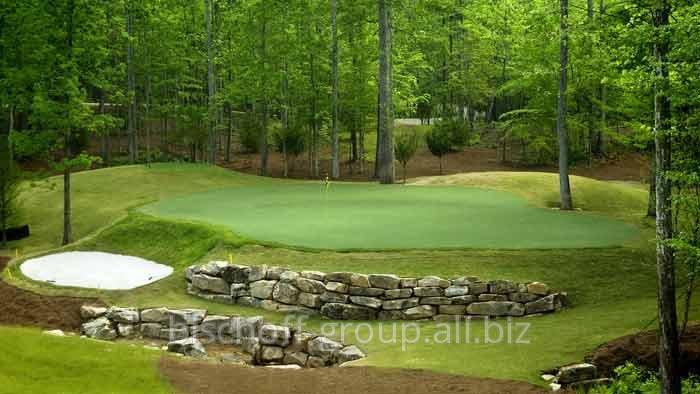 Специальные виды премиум газона для гольфа и мини-гольфа