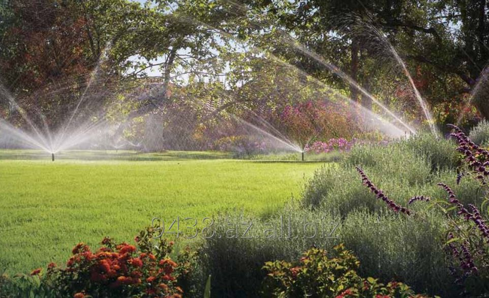 Buy Automatic watering