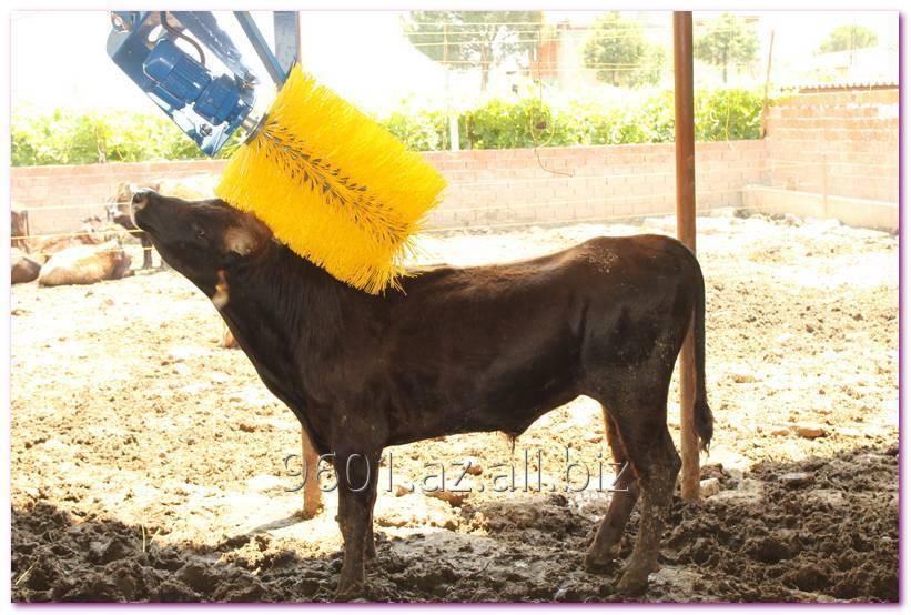 Купить Щетки чесалки для коров