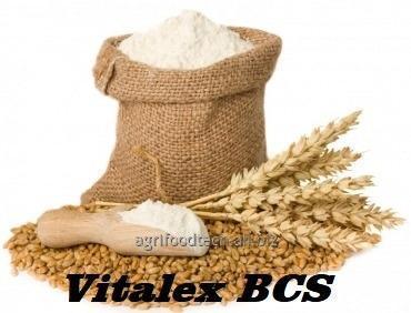 Купить Улучшитель для муки Vitalex BCS - Аромат