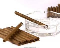 Изделия табачные