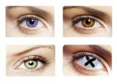 Цветные линзы контактные