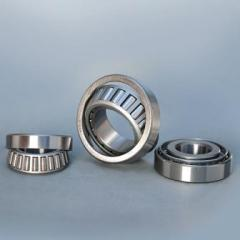 Roller bearing persistent with conic rollers