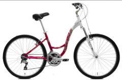 Champion Велосипеды женские  STELS Miss 7700