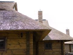 Reed roofs