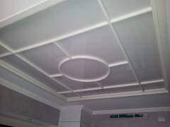 False ceilings Tree Arth 5