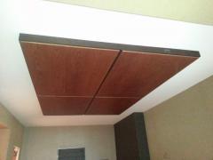 False ceilings Tree Arth 6