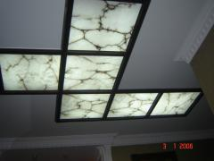 False ceilings Tree Arth 16