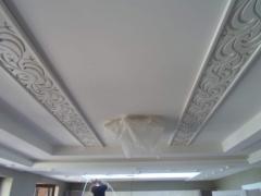 False ceilings Tree Arth 32