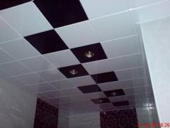 Ceilings Metal Art 2