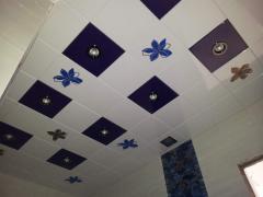 Ceilings Metal Art 9