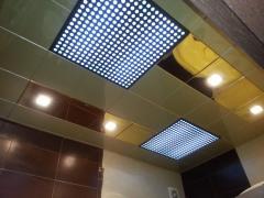 Ceilings Metal Art 30