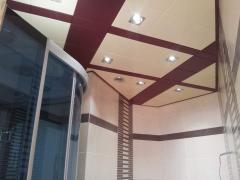 Ceilings Metal Art 32