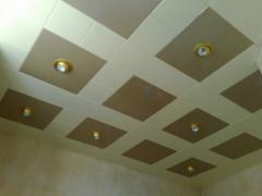 Ceilings metal Arth 44