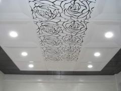 Ceilings metal Arth 51