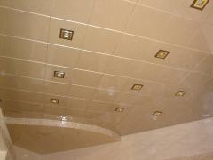 Ceilings metal Arth 55