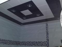 Ceilings metal Arth 68