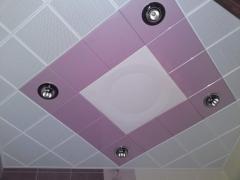 Ceilings metal Arth 70
