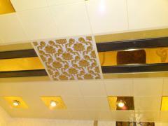 Ceilings metal Arth 73