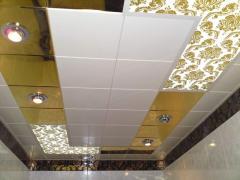 Ceilings metal Arth 74