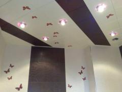 Ceilings metal Arth 88