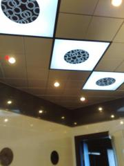 Ceilings metal Arth 89