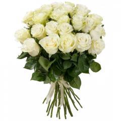 Белые Розы All You Need