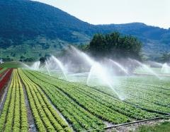 Irrigation system of agricultural purpose