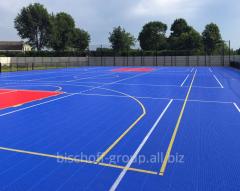 Basketball platform