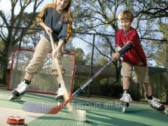 Hockey platform