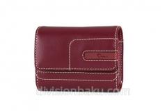 Bag for the Lowepro Portofino 10 Red Lp36083-0Eu