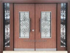 Door entrance double for buildings
