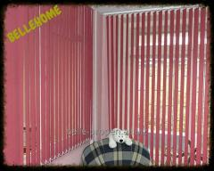 Blinds are horizontal color