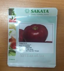 SEEDS OF THE PINK TOMATO OF PINK PARADAYZ Ö1(PINK