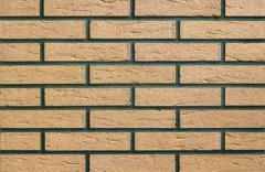 Facing brick 0339