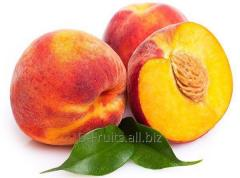 We grow up and deliver eight grades of a peach.