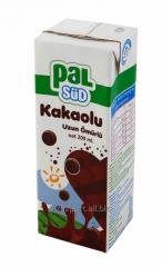 Шоколадное молоко (200мл)