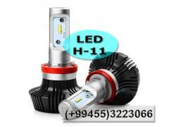 LED H-11.