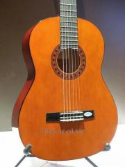 Guitars of Valencia CG 160 OR