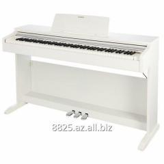 Casio AP-450 Белый