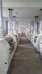 Мельничный комплекс 500 тонн в сутки Алжир