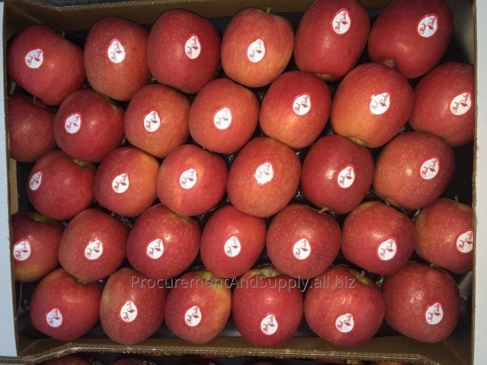 fresh_granny_smith_and_golden_type_apples
