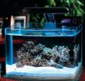 Оргстекло для аквариума