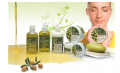 Means on care of skin of Olive Body Butter